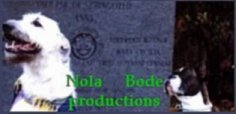 NB Productions, dog training